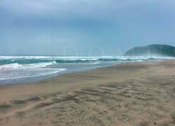 Land on the beach in San Juan de Alima, Michoacan. Excellent investment opportunity.